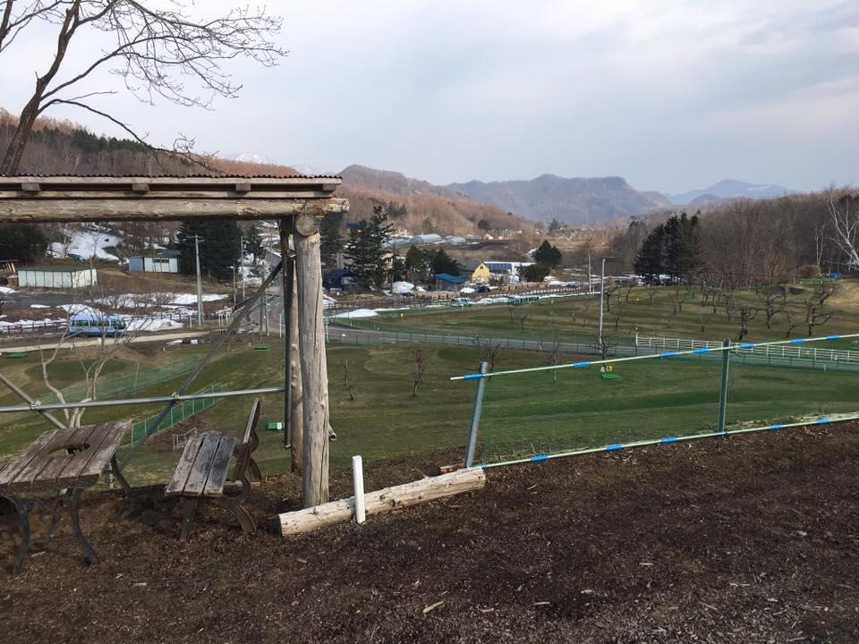 札幌PG石山 2017年オープン杯 大会結果(2017年4月23日開催)